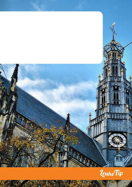 What to do in Haarlem 15 highlights museums courtyards