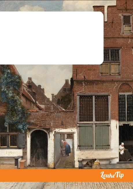 Delft guide in footsteps Vermeer painter history